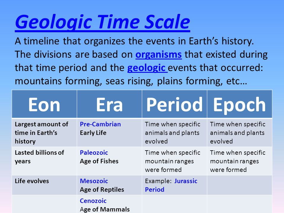 Geologic Time Scale A timeline that organizes the events in Earths history. The divisions are based on organisms that existed during that time period