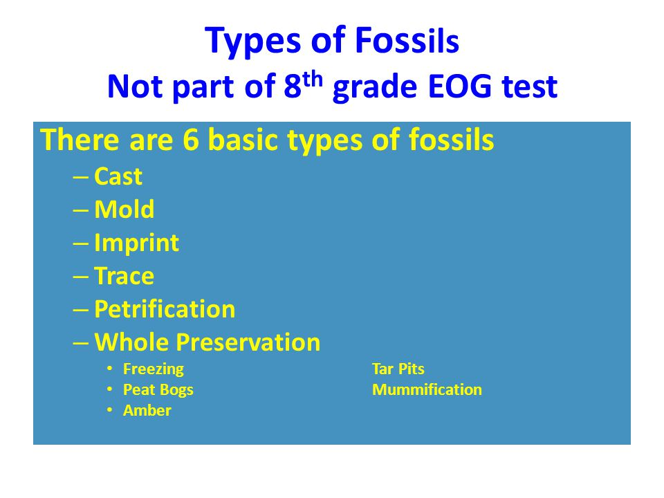 Types of Foss ils Not part of 8 th grade EOG test There are 6 basic types of fossils – Cast – Mold – Imprint – Trace – Petrification – Whole Preservat