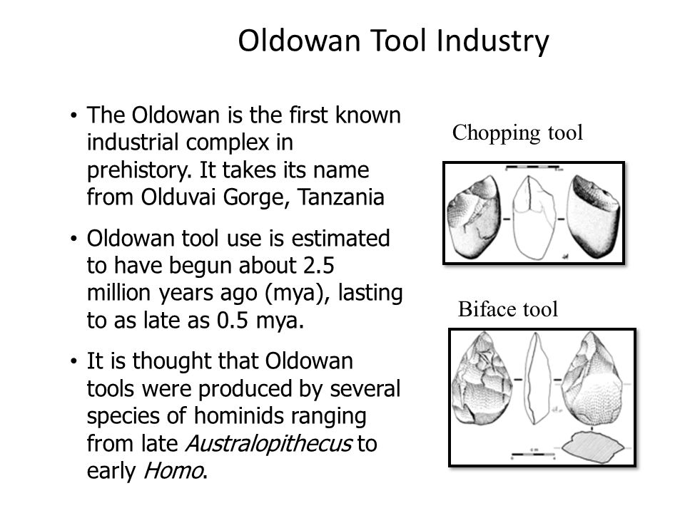 Oldowan Tool Industry The Oldowan is the first known industrial complex in prehistory.