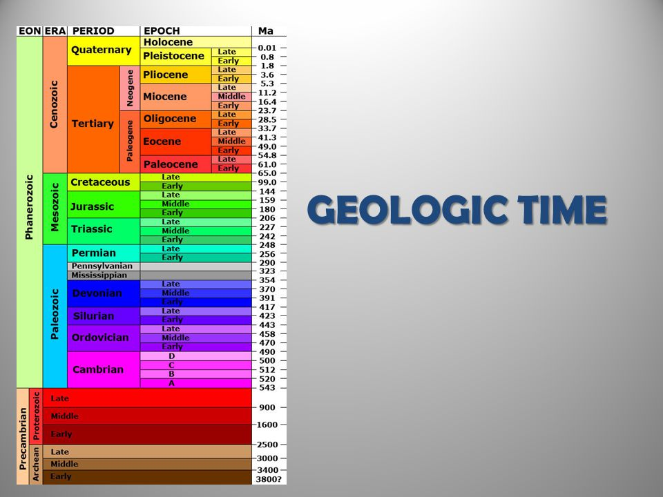 Structure of the Time Scale The Geologic Time Scale Eons represent the greatest expanses of time.