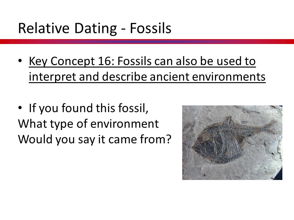Key Concept 16: Fossils can also be used to interpret and describe ancient environments If you found this fossil, What type of environment Would you s