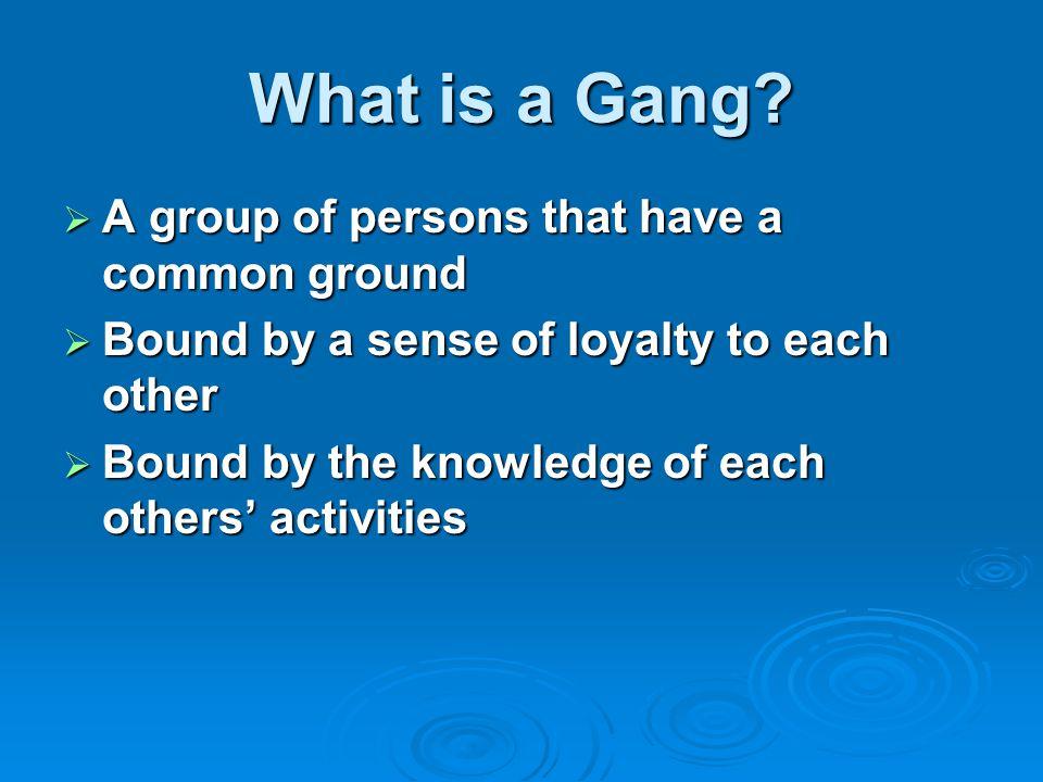 Why enter a gang.