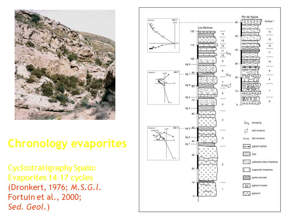 Cyclostratigraphy Spain: Evaporites 14-17 cycles (Dronkert, 1976; M.S.G.l. Fortuin et al., 2000; Sed. Geol.) Chronology evaporites