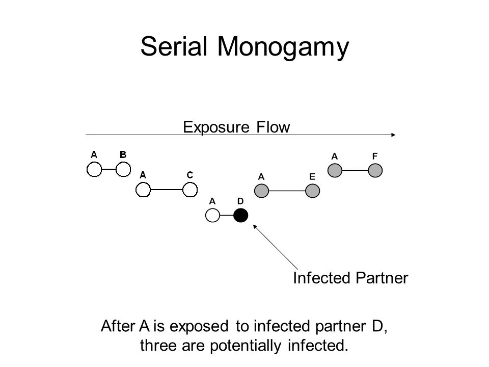 Serial Monogamy Exposure Flow Infected Partner After A is exposed to infected partner D, three are potentially infected.