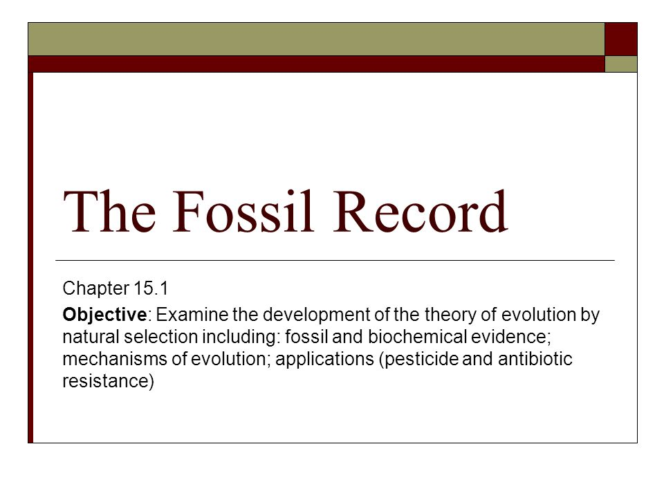 The Fossil Record Chapter 15.1 Objective: Examine the development of the theory of evolution by natural selection including: fossil and biochemical ev