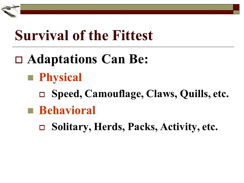 Survival of the Fittest Adaptations Can Be: Physical Speed, Camouflage, Claws, Quills, etc. Behavioral Solitary, Herds, Packs, Activity, etc.