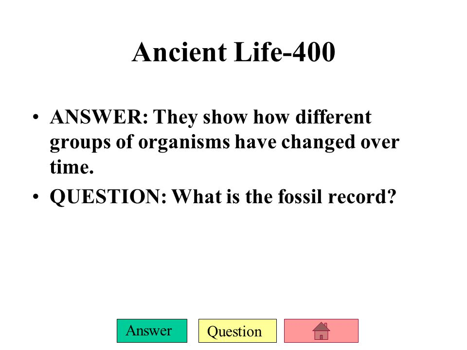 Question Answer Ancient Life-400 ANSWER: They show how different groups of organisms have changed over time.
