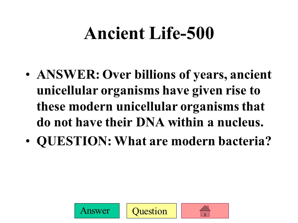 Question Answer Grab Bag 500 ANSWER: The theory in which eukaryotic cells formed from symbiosis among several different prokaryotic organisms.
