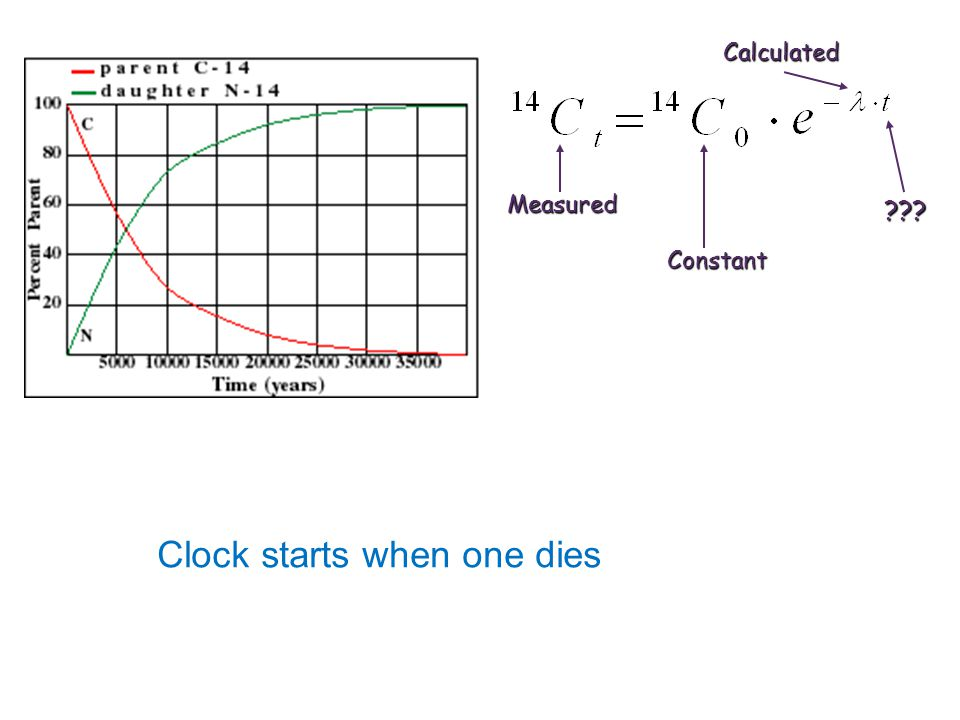 Measured Constant Calculated ??? Clock starts when one dies