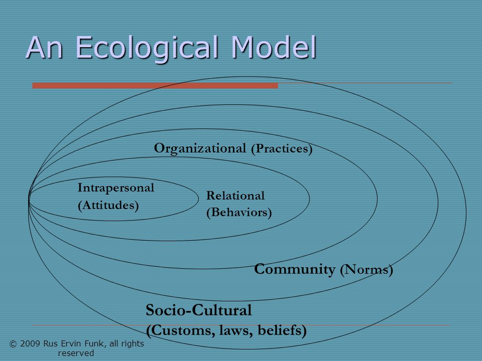 An Ecological Model Intrapersonal (Attitudes) Relational (Behaviors) Organizational (Practices) Community (Norms) Socio-Cultural (Customs, laws, belie