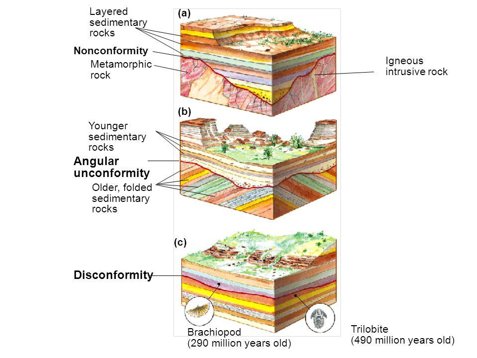 8_9 (a) (b) (c) Layered sedimentary rocks Nonconformity Metamorphic rock Igneous intrusive rock Younger sedimentary rocks Angular unconformity Older,