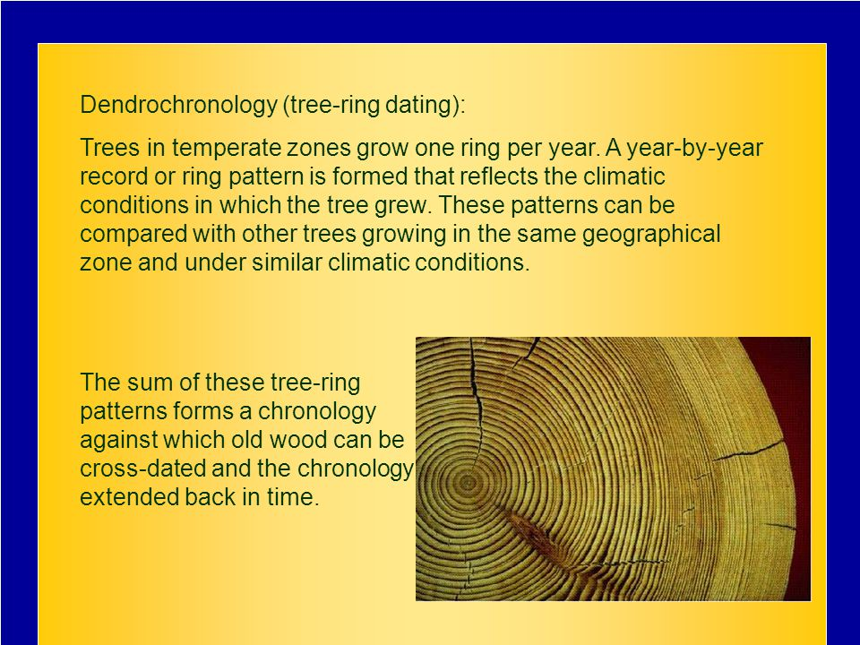 Dendrochronology (tree-ring dating): Trees in temperate zones grow one ring per year.