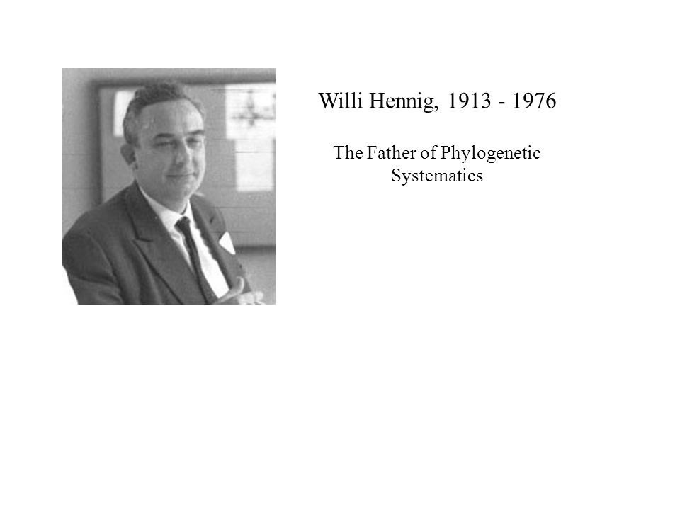 Willi Hennig, 1913 - 1976 The Father of Phylogenetic Systematics