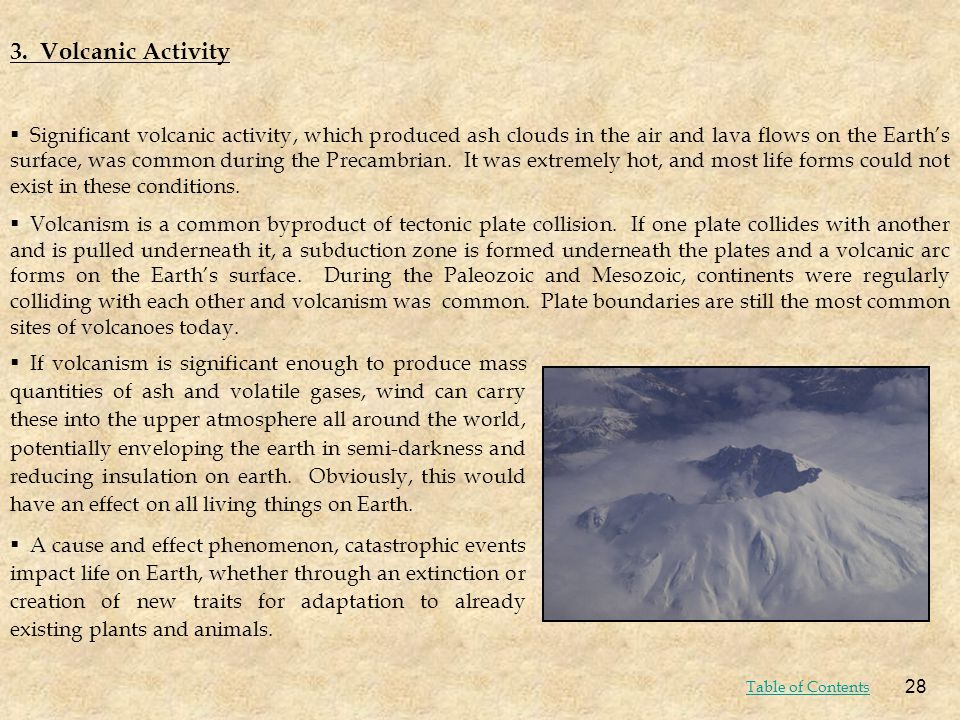 3. Volcanic Activity Significant volcanic activity, which produced ash clouds in the air and lava flows on the Earths surface, was common during the P