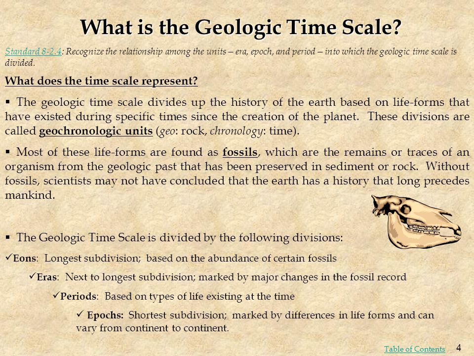 What is the Geologic Time Scale? What does the time scale represent? The geologic time scale divides up the history of the earth based on life-forms t
