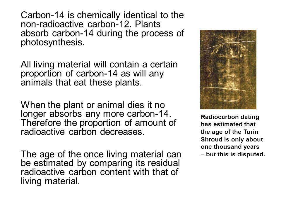 Carbon-14 is chemically identical to the non-radioactive carbon-12. Plants absorb carbon-14 during the process of photosynthesis. All living material