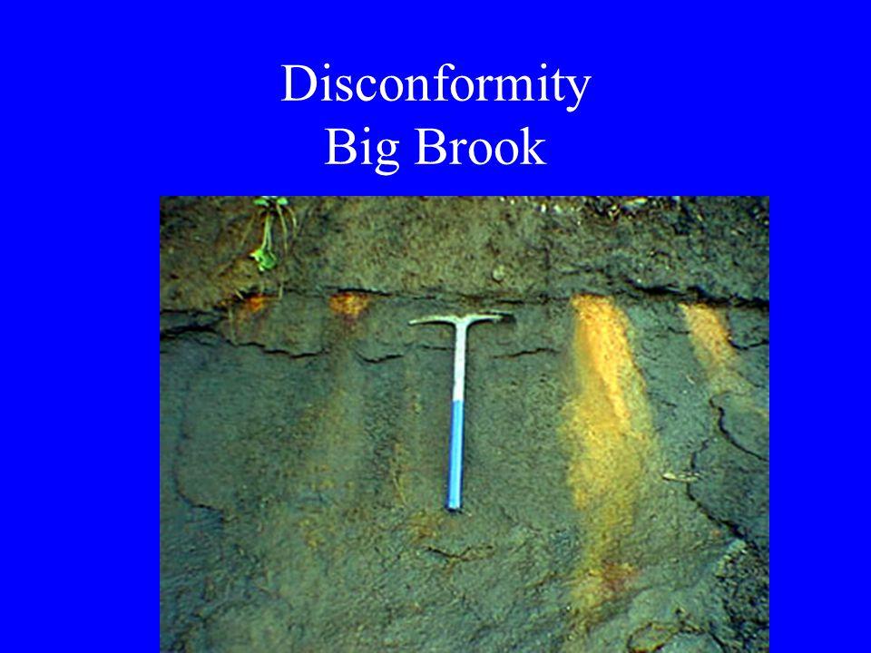 Disconformity Big Brook