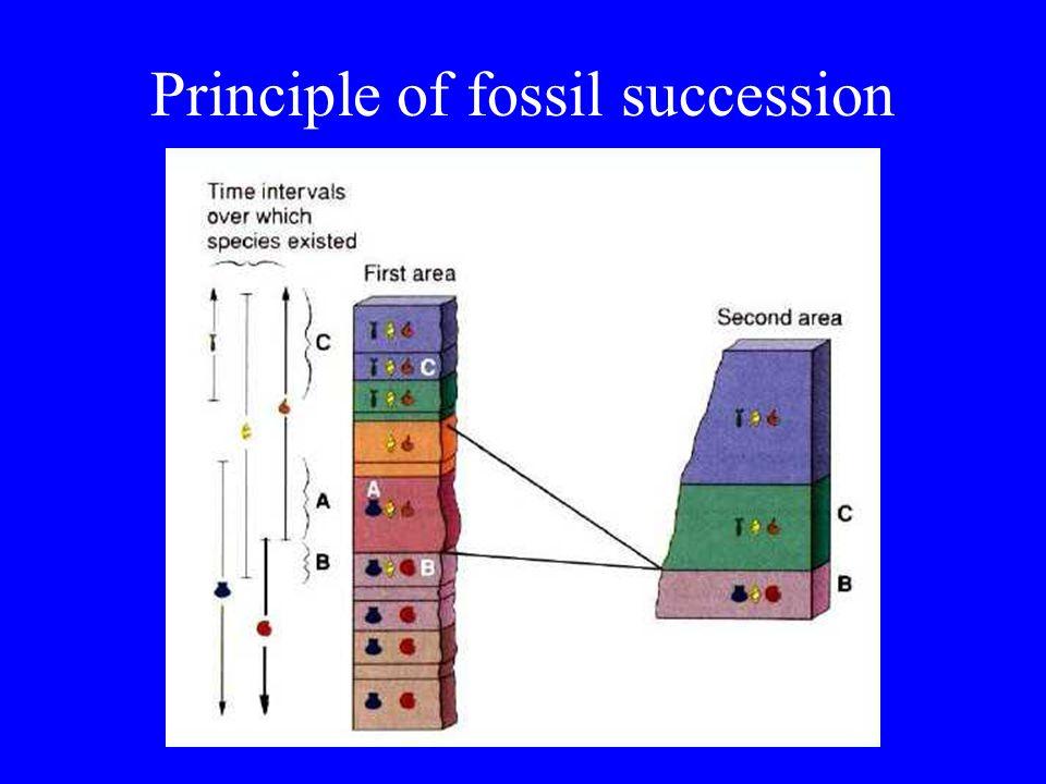 Geologic Time Scale Geochronologic Units = Place –Eon (largest) = Eon –Era = Era –System = Period –Series = Epoch –Stage = Age