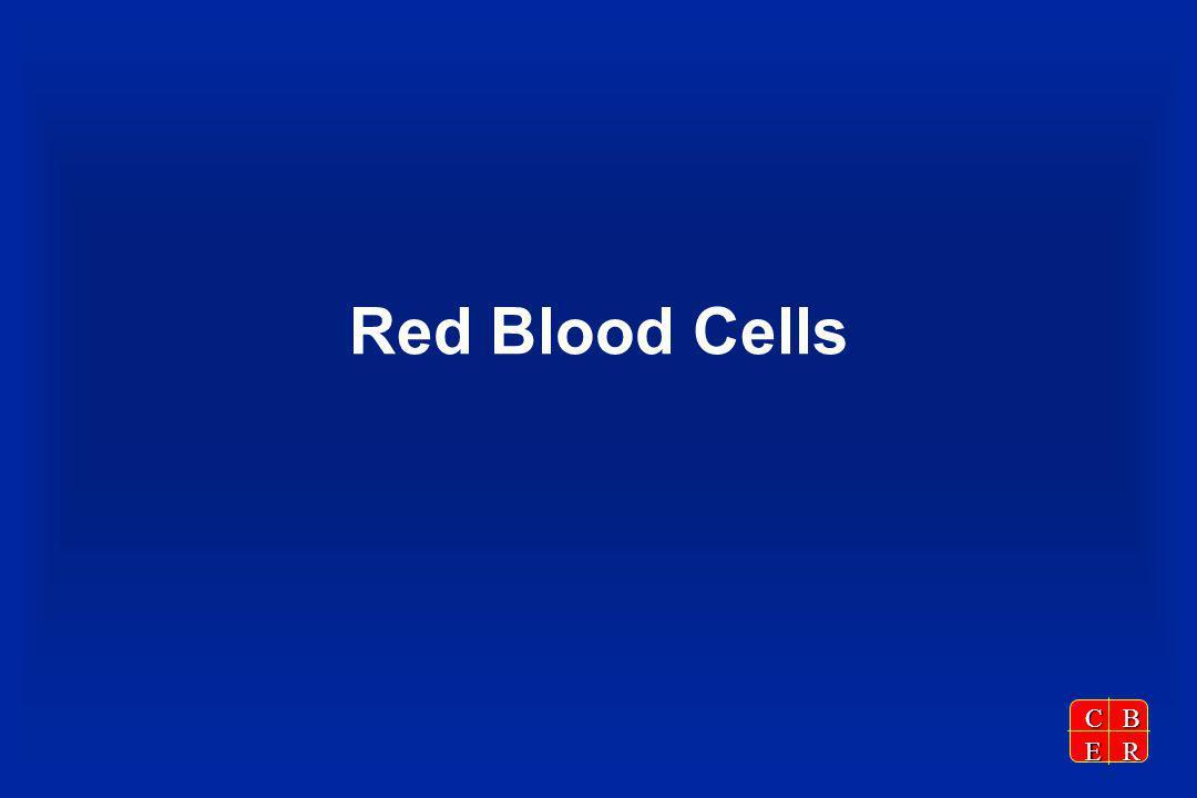 CBER Red Blood Cells