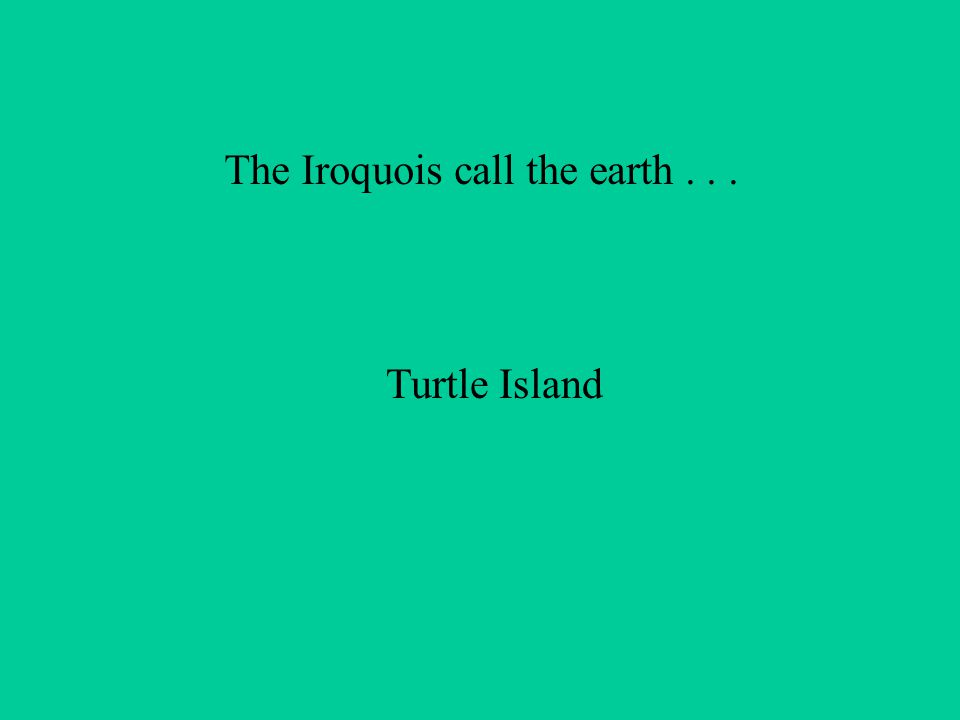 The Iroquois call the earth... Turtle Island