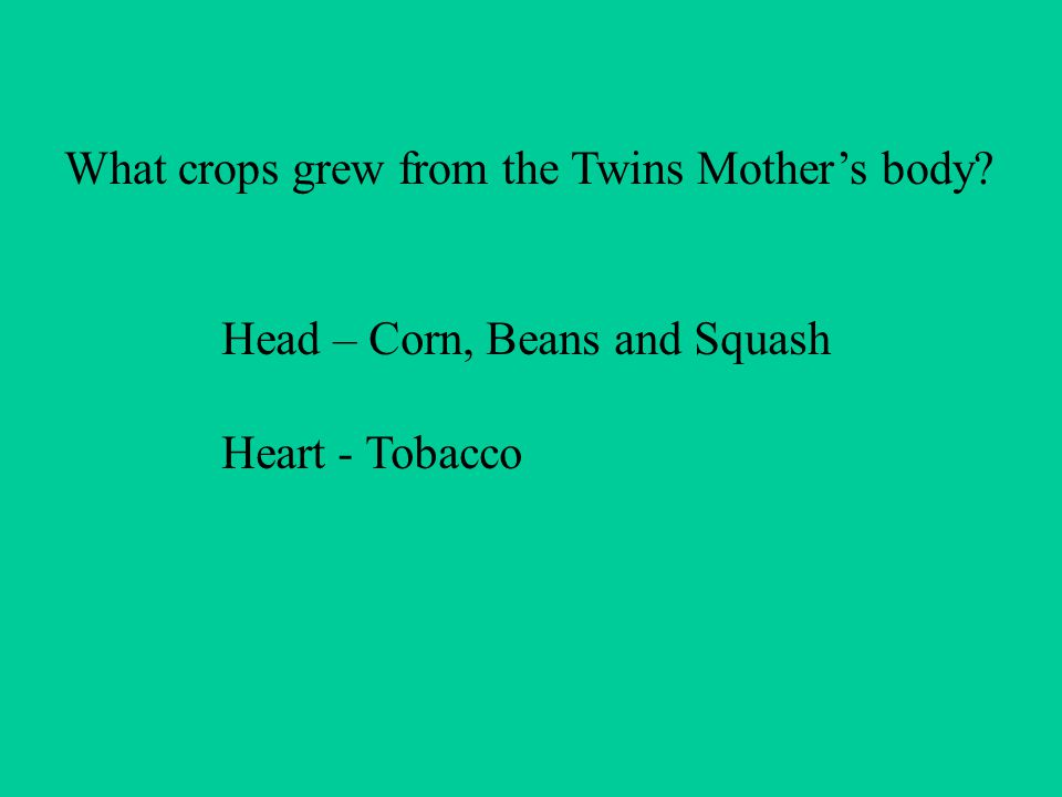 What crops grew from the Twins Mothers body Head – Corn, Beans and Squash Heart - Tobacco