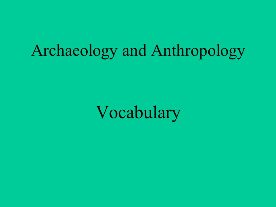 Archaeology and Anthropology Vocabulary