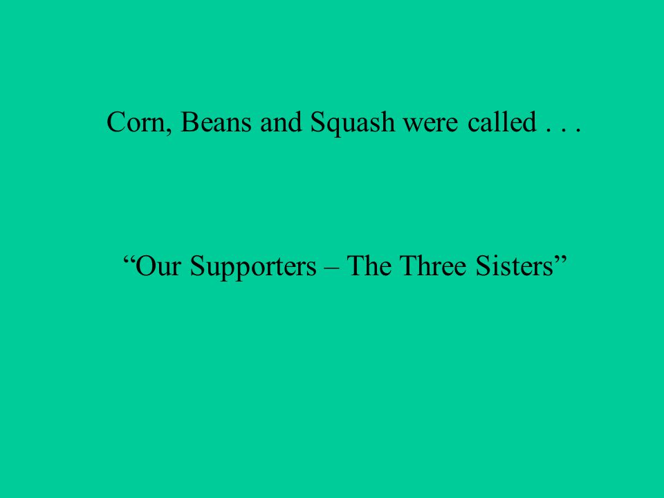 Corn, Beans and Squash were called... Our Supporters – The Three Sisters