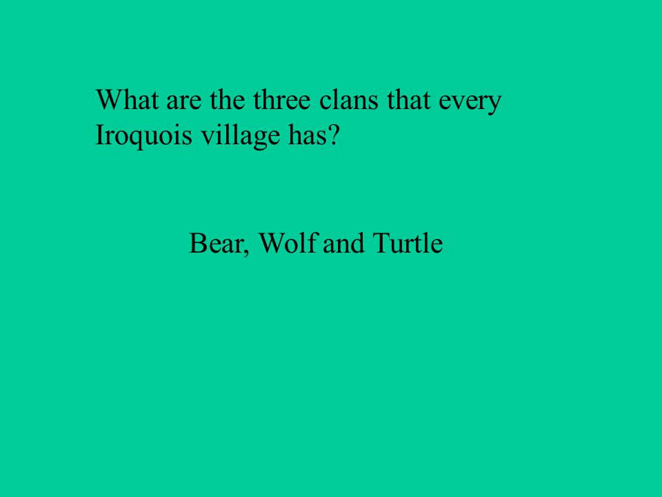 What are the three clans that every Iroquois village has Bear, Wolf and Turtle