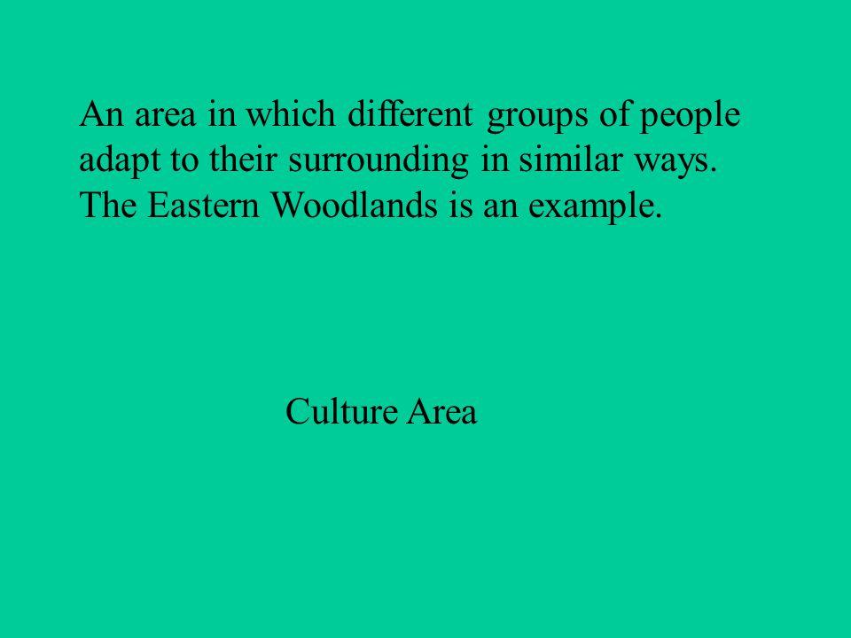Iroquois Family Organization Kinship System