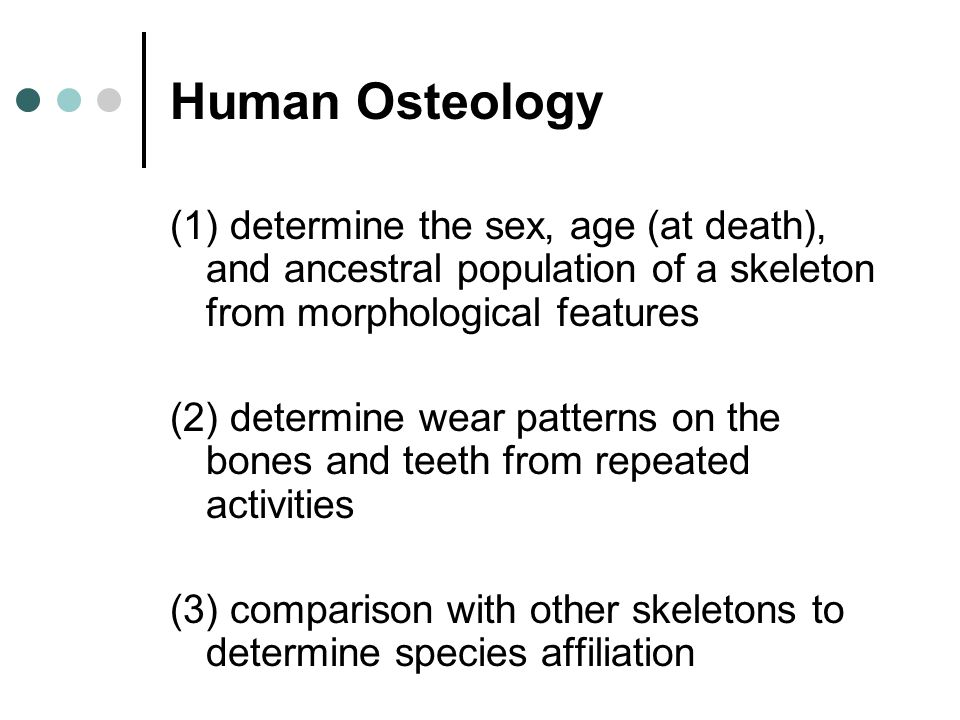 Human Osteology (1) determine the sex, age (at death), and ancestral population of a skeleton from morphological features (2) determine wear patterns