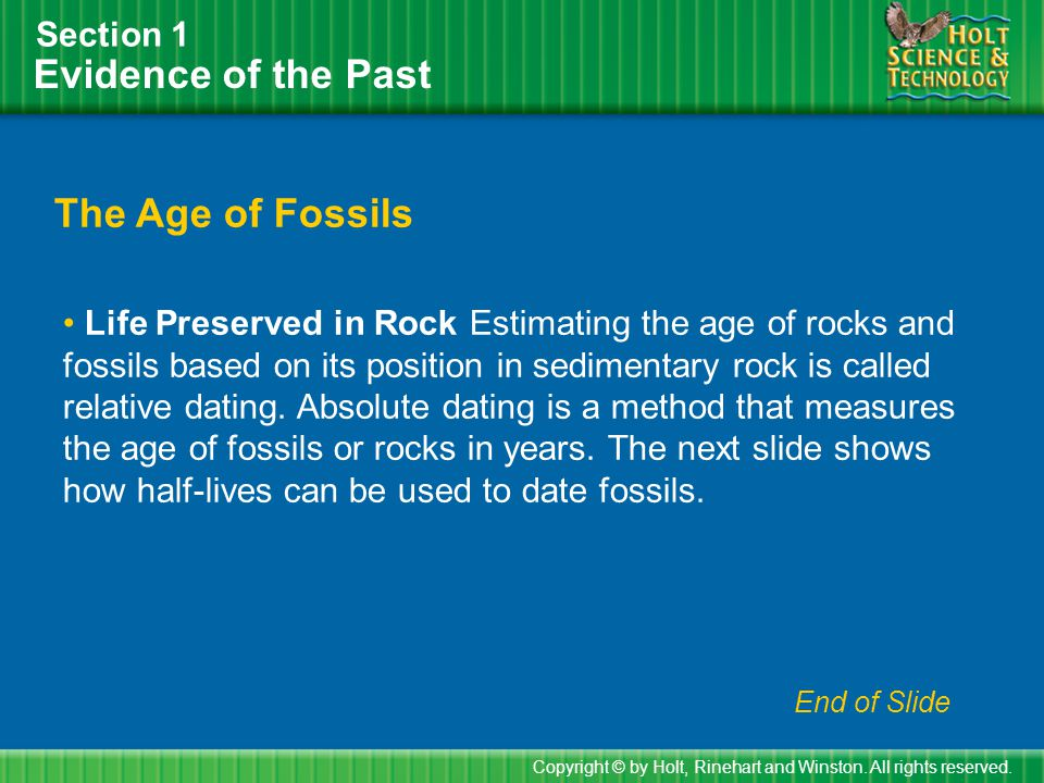 Using Half-Lives to Date Fossils Section 1 Copyright © by Holt, Rinehart and Winston.