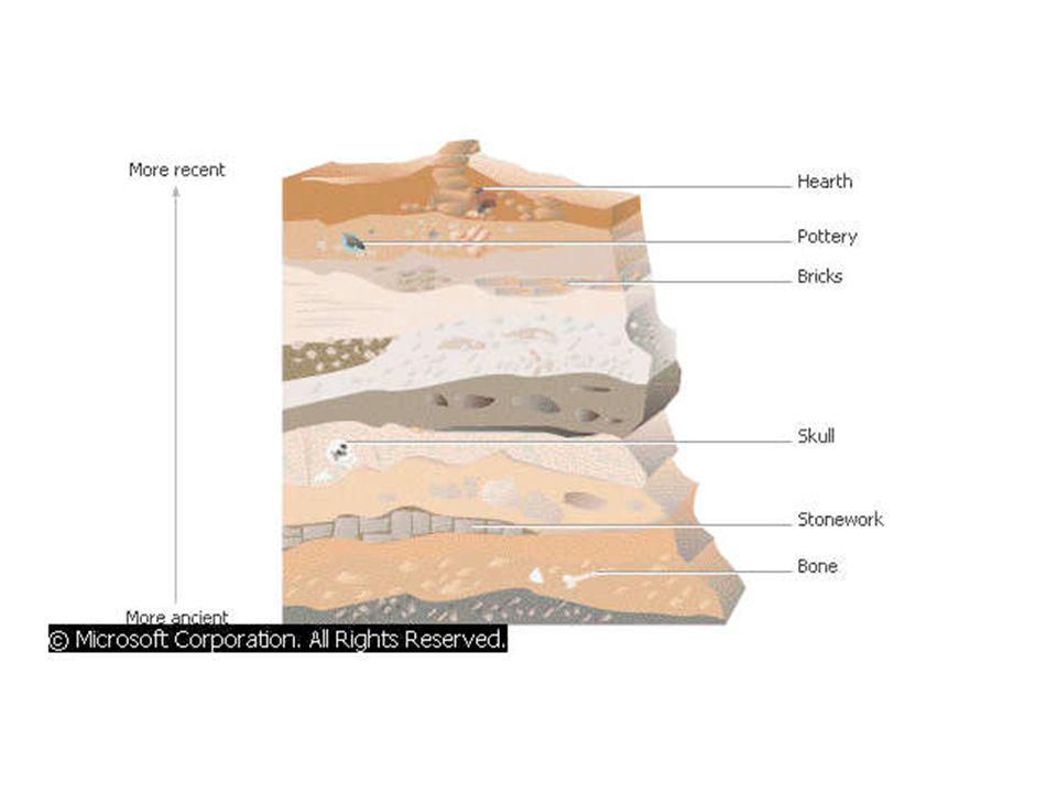 How are undisturbed rock layers dated.