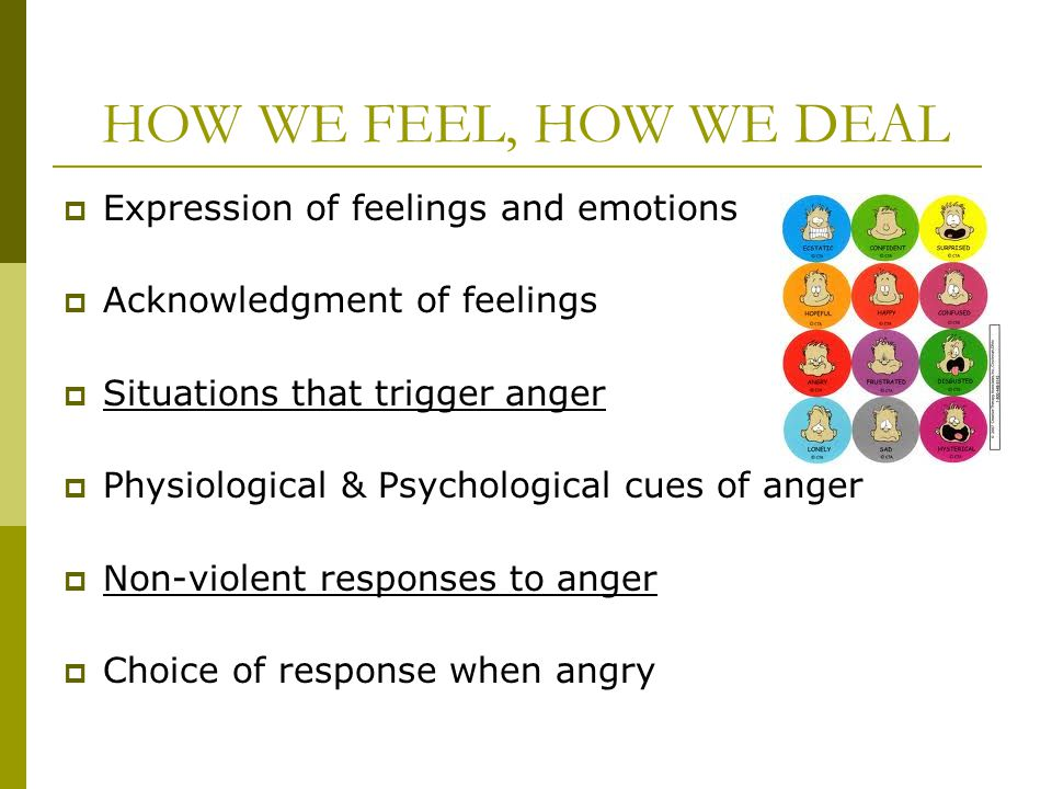 HOW WE FEEL, HOW WE DEAL Expression of feelings and emotions Acknowledgment of feelings Situations that trigger anger Physiological & Psychological cu