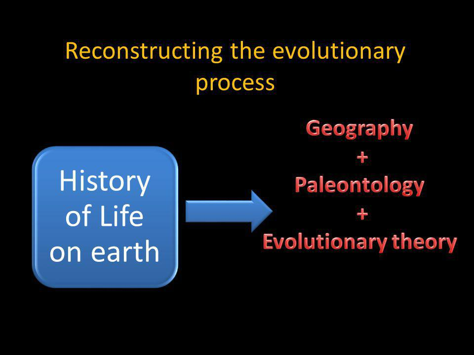 Reconstructing the evolutionary process History of Life on earth