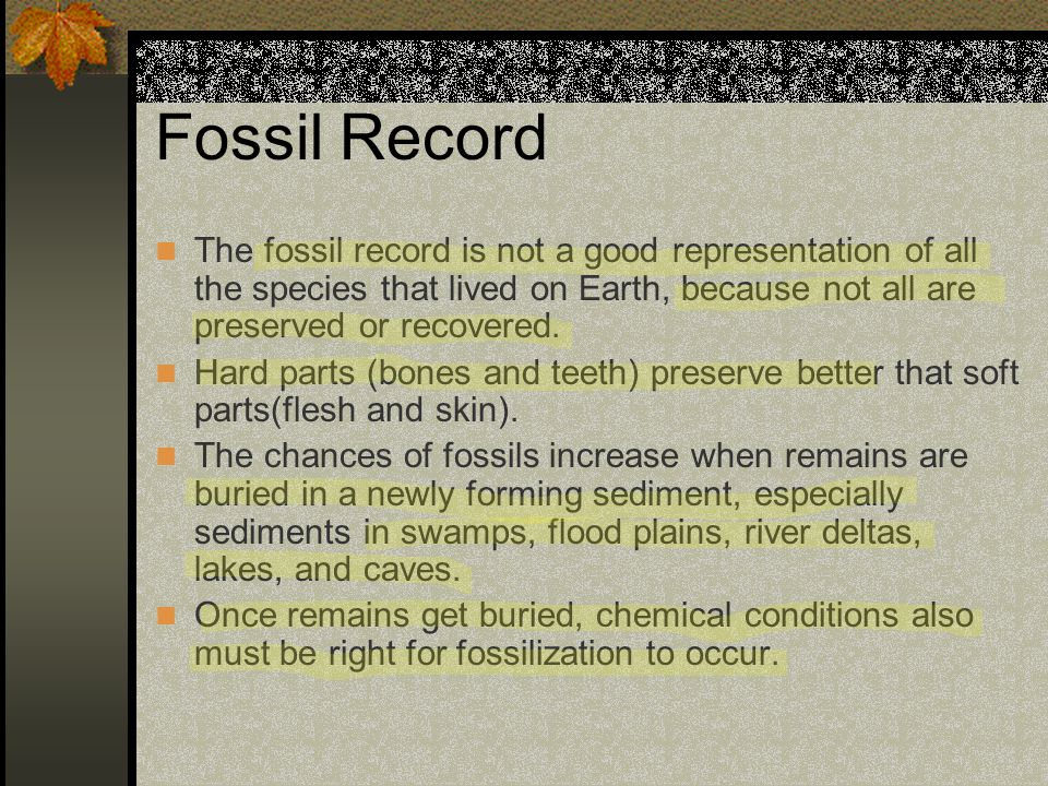 Fossil Record The fossil record is not a good representation of all the species that lived on Earth, because not all are preserved or recovered. Hard