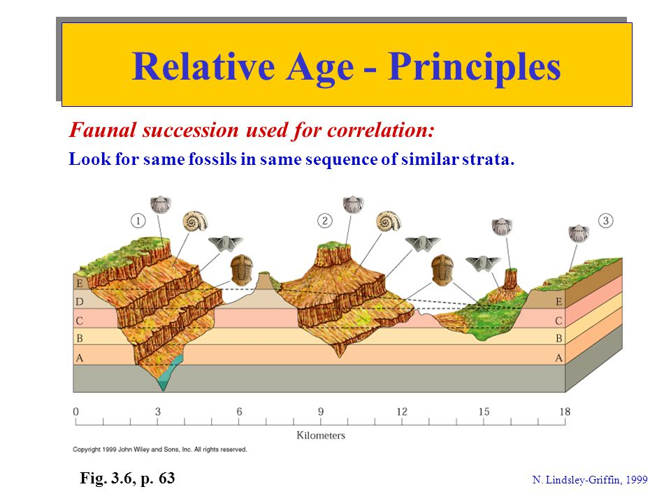 Absolute Age - Principles © Houghton Mifflin 1998; N.