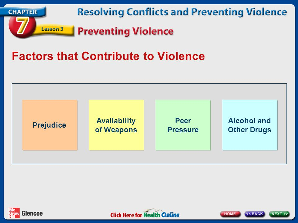 Factors that Contribute to Violence Prejudice Availability of Weapons Peer Pressure Alcohol and Other Drugs
