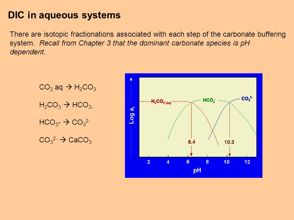 DIC in aqueous systems There are isotopic fractionations associated with each step of the carbonate buffering system.