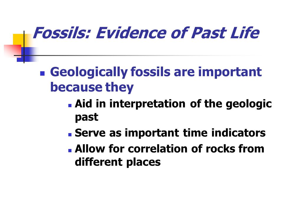 Fossils: Evidence of Past Life Geologically fossils are important because they Aid in interpretation of the geologic past Serve as important time indi