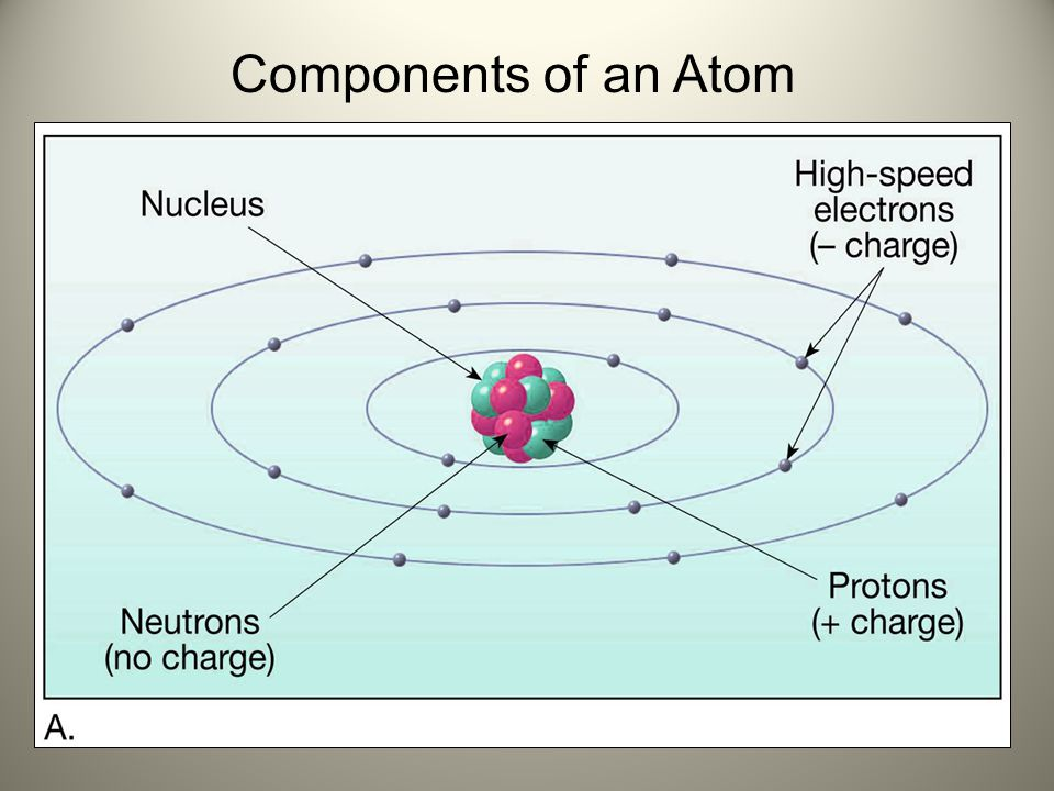 Components of an Atom