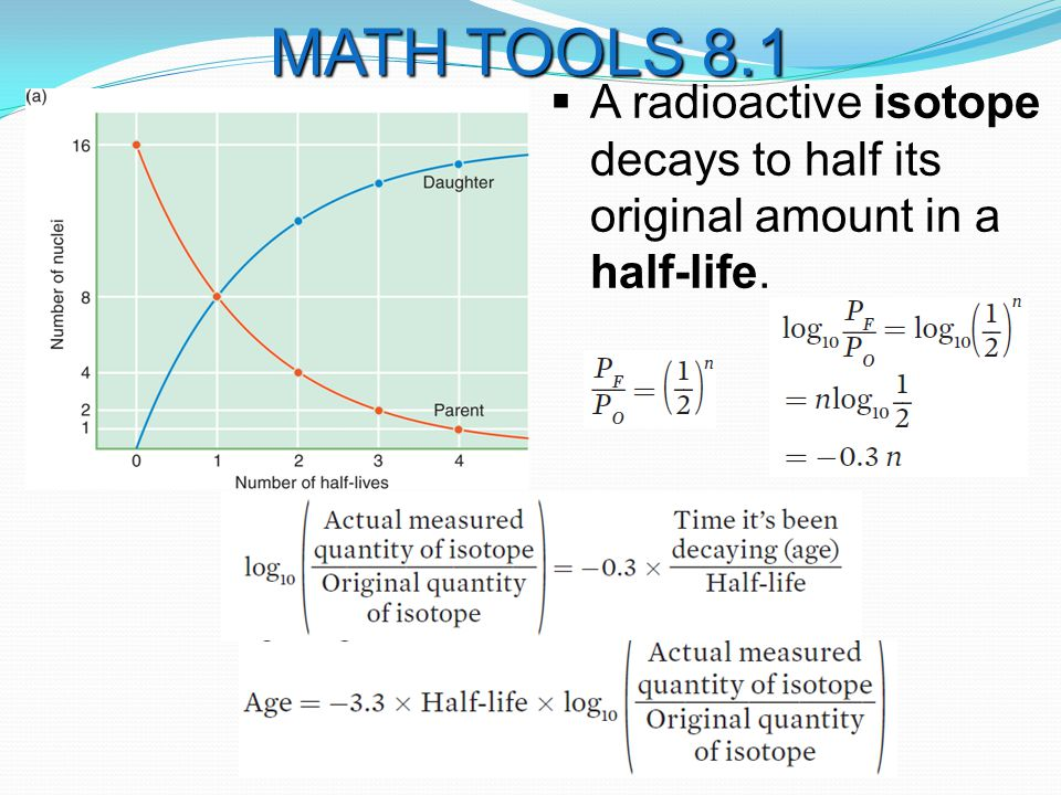 A radioactive isotope decays to half its original amount in a half-life. MATH TOOLS 8.1