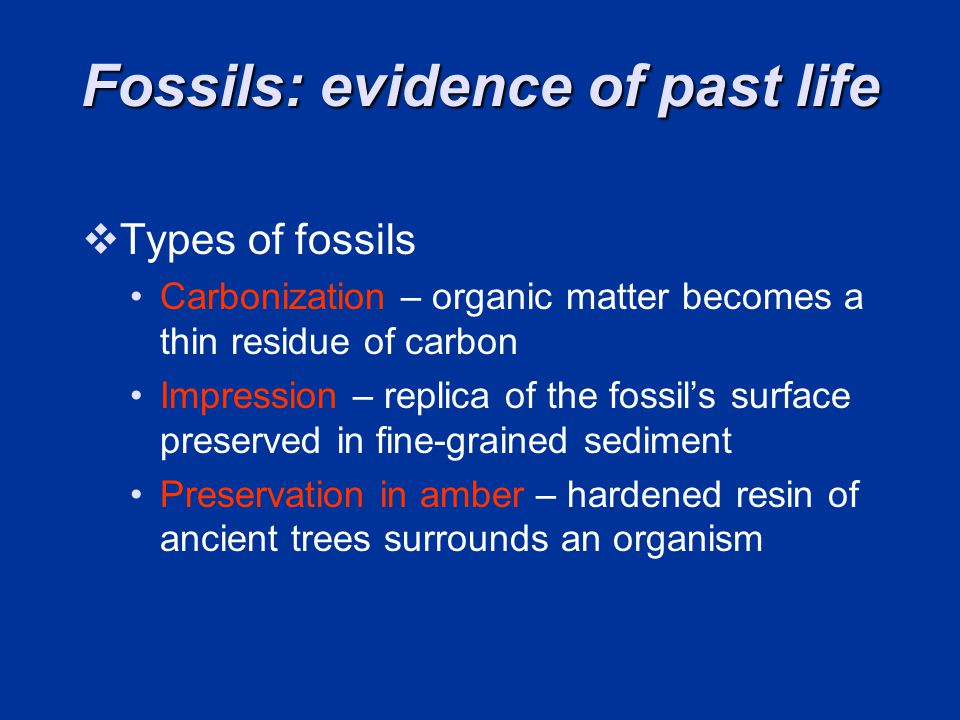Fossils: evidence of past life Types of fossils Carbonization – organic matter becomes a thin residue of carbon Impression – replica of the fossils surface preserved in fine-grained sediment Preservation in amber – hardened resin of ancient trees surrounds an organism