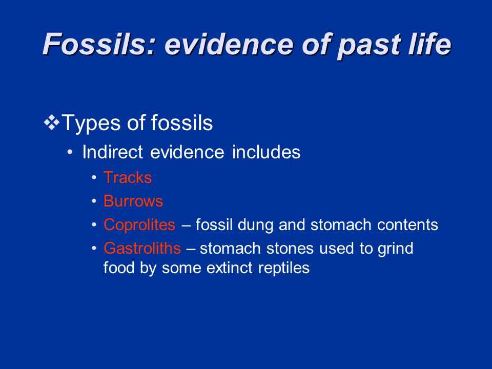 Fossils: evidence of past life Types of fossils Indirect evidence includes Tracks Burrows Coprolites – fossil dung and stomach contents Gastroliths – stomach stones used to grind food by some extinct reptiles