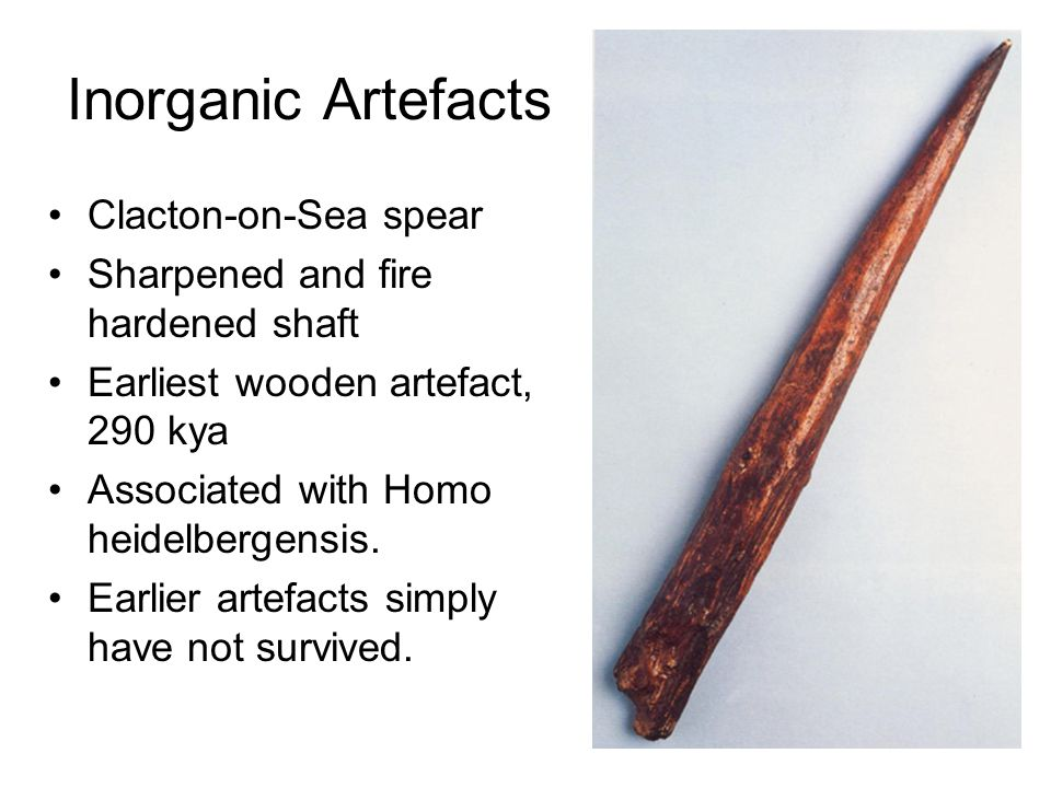 Inorganic Artefacts Clacton-on-Sea spear Sharpened and fire hardened shaft Earliest wooden artefact, 290 kya Associated with Homo heidelbergensis.