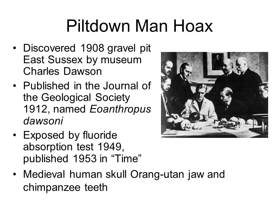 Piltdown Man Hoax Discovered 1908 gravel pit East Sussex by museum Charles Dawson Published in the Journal of the Geological Society 1912, named Eoanthropus dawsoni Exposed by fluoride absorption test 1949, published 1953 in Time Medieval human skull Orang-utan jaw and chimpanzee teeth