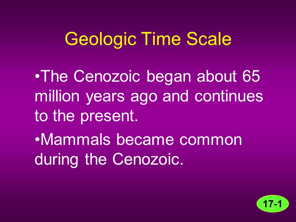 Geologic Time Scale The Cenozoic began about 65 million years ago and continues to the present. Mammals became common during the Cenozoic. 17-1