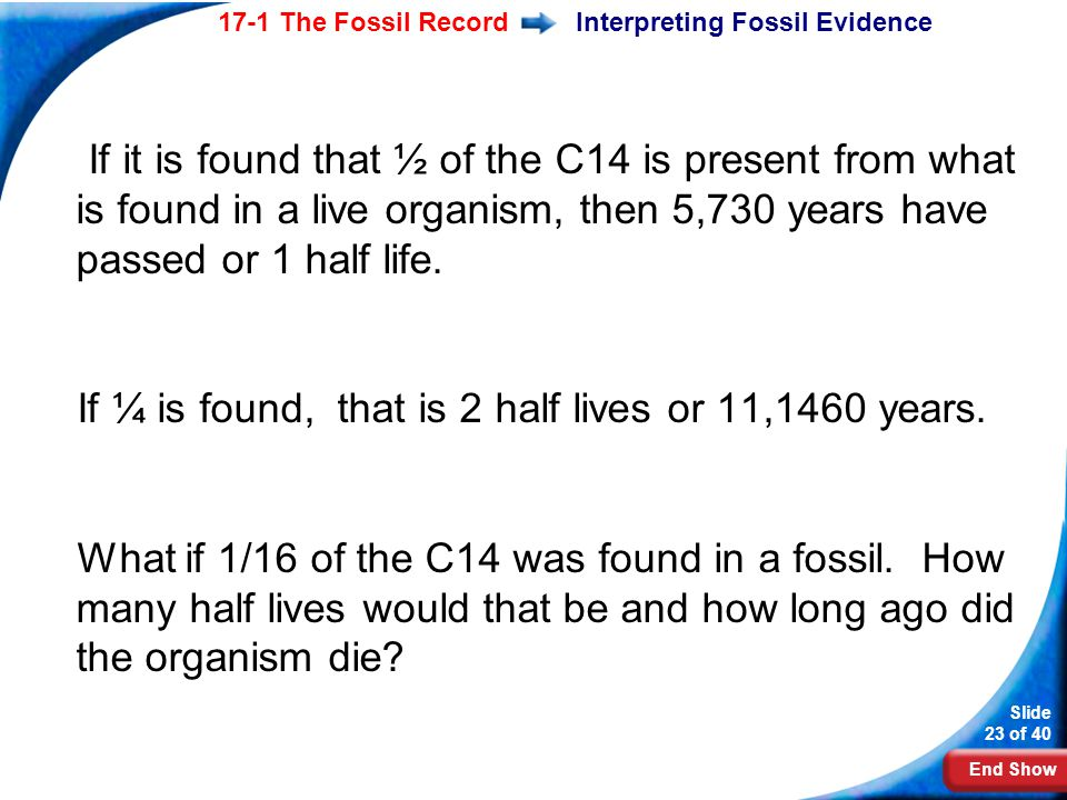 End Show Slide 23 of 40 17-1 The Fossil RecordInterpreting Fossil Evidence If it is found that ½ of the C14 is present from what is found in a live or
