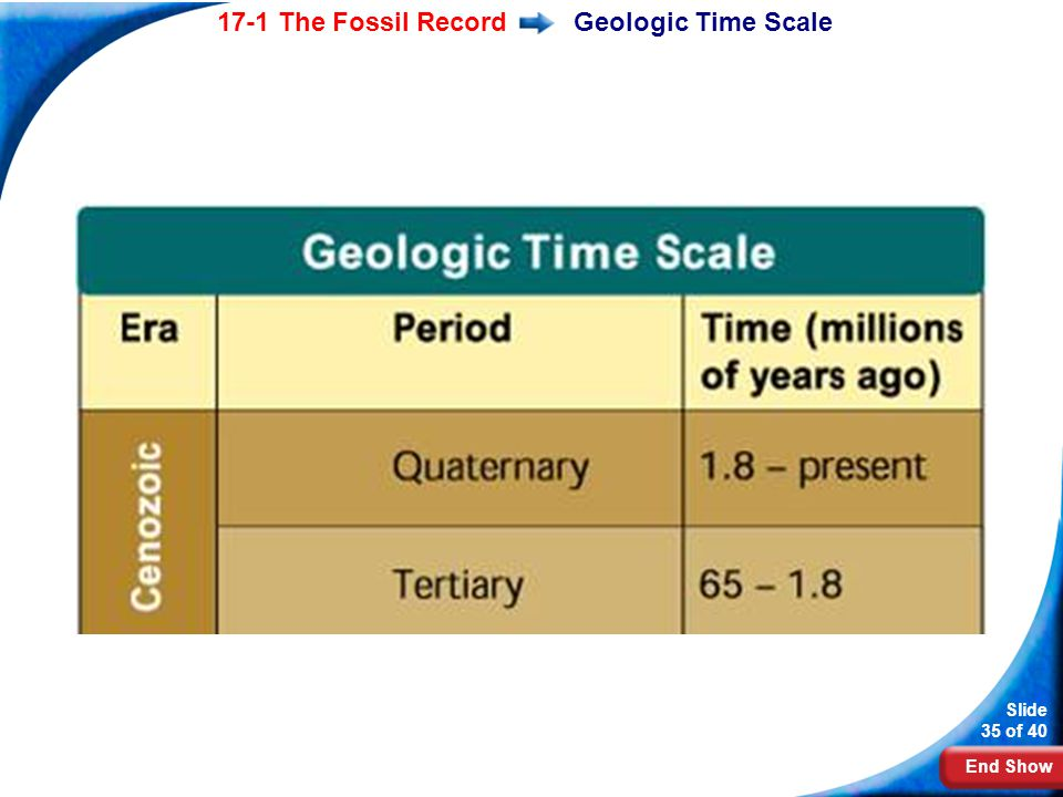 End Show Slide 35 of 40 17-1 The Fossil RecordGeologic Time Scale