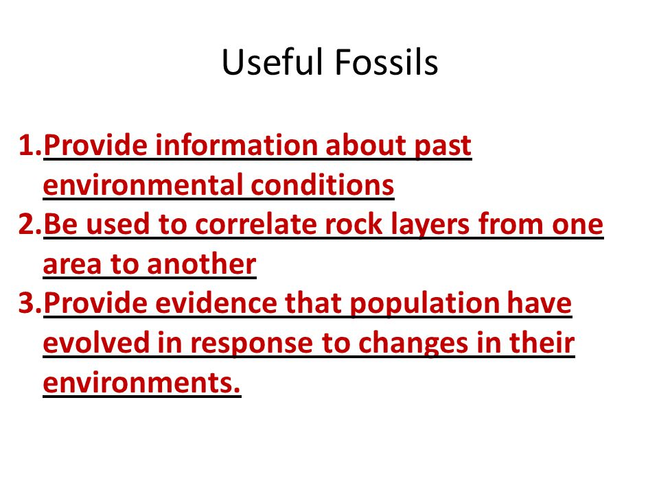Useful Fossils 1.Provide information about past environmental conditions 2.Be used to correlate rock layers from one area to another 3.Provide evidenc