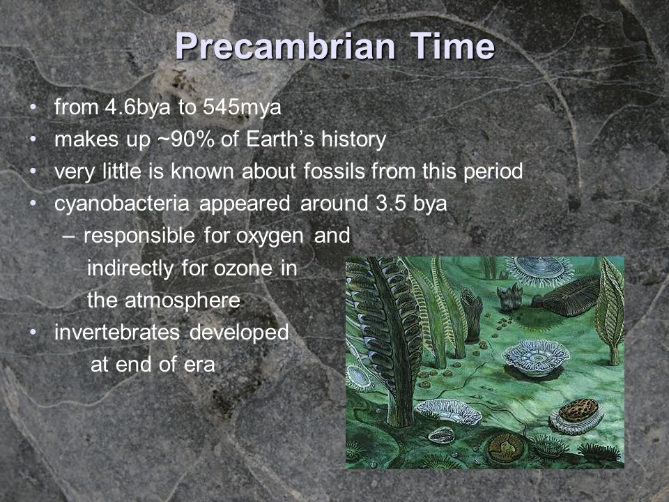 Precambrian Time from 4.6bya to 545mya makes up ~90% of Earths history very little is known about fossils from this period cyanobacteria appeared arou
